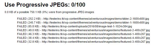 0 100 prog jpeg