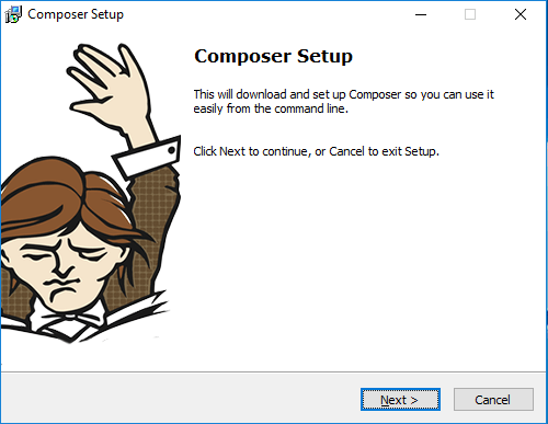 composer installer wizard windows