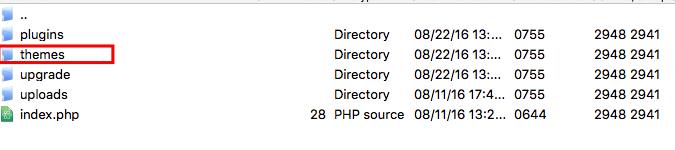 wordpress themes folder
