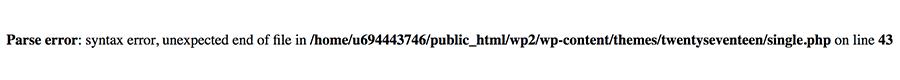 erro de sintaxe no wordpress