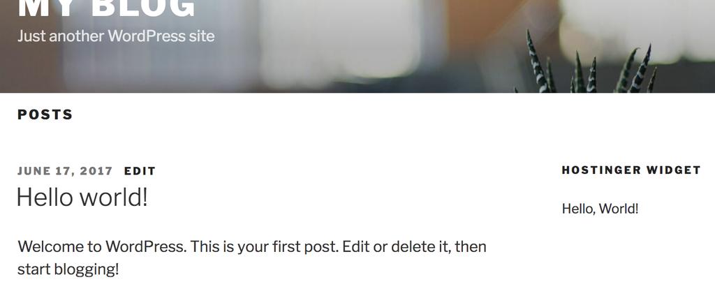 frontend-do-wordpress