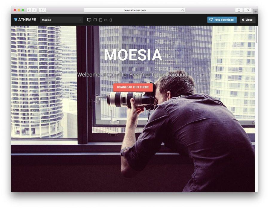 hostinger-wordpress-theme-directory-15
