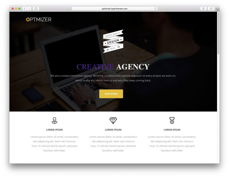 tema wordpress optmizer