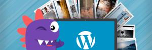 drago ajuda a escolher os melhores temas wordpress para 2018