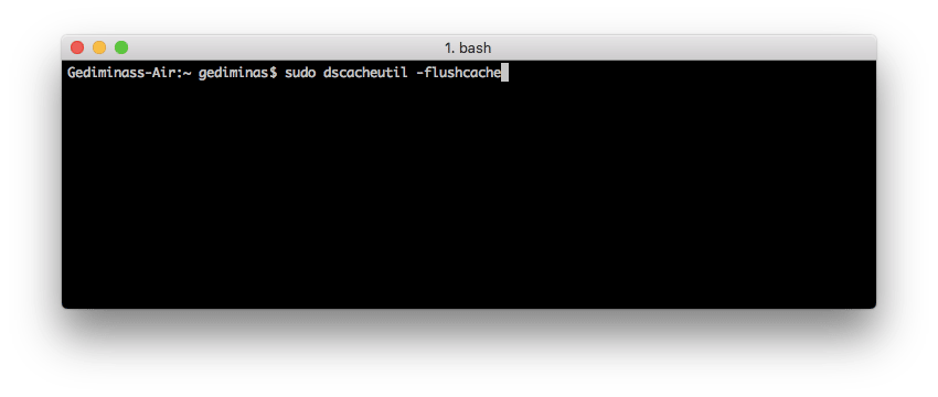 Flush DNS MAC OS x Snow Leopard