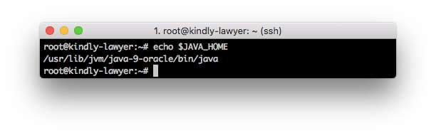Java variable home
