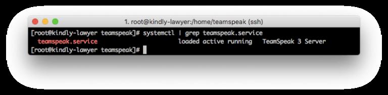 script de inicialização do TS3