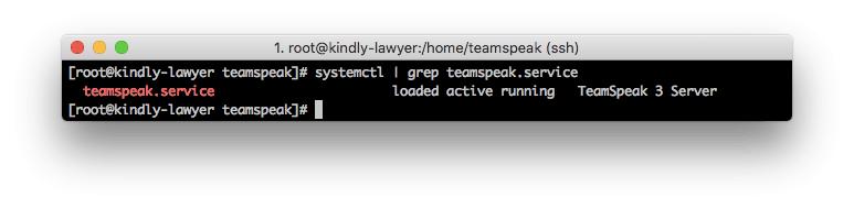 checando a inicialização do TS3 boot