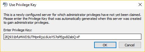 colocando a chave privilegiada no TS3 para windows