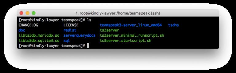 arquivos do servidor teamspeak