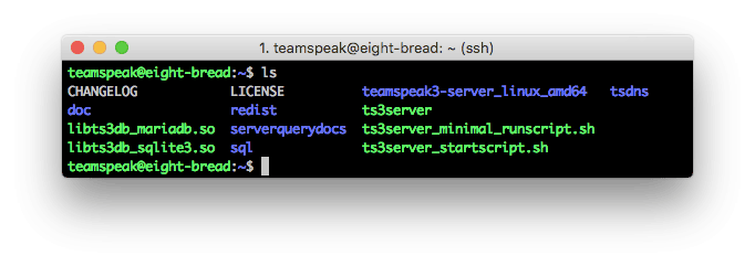 teamspeak-ssh-is