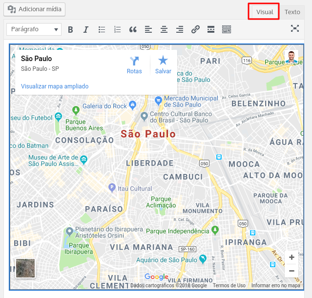 visualização do mapa google maps pela aba visual do wordpress