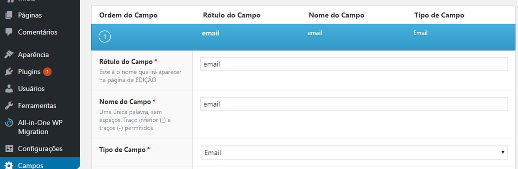 criando um campo personalizado de email no WordPress