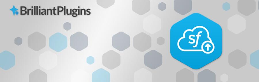 Plugin crm wordpress Brilliant Web-to-Lead for Salesforce
