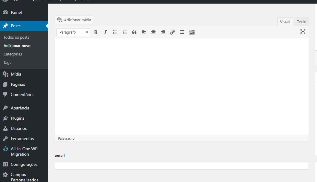 verificando se o campo personalizado WordPress criado está funcionando no site