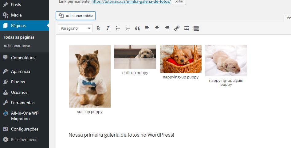 inserir galeria no wordpress