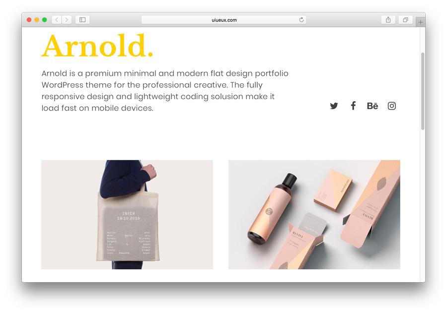 faça um portfólio no WordPress com o tema pago Arnold