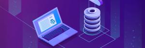 detalhes sobre o que é um banco de dados wordpress