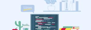 Tutorial Básico Comando Cat Linux
