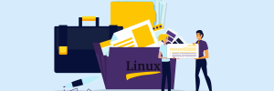 como usar comando unzip linux
