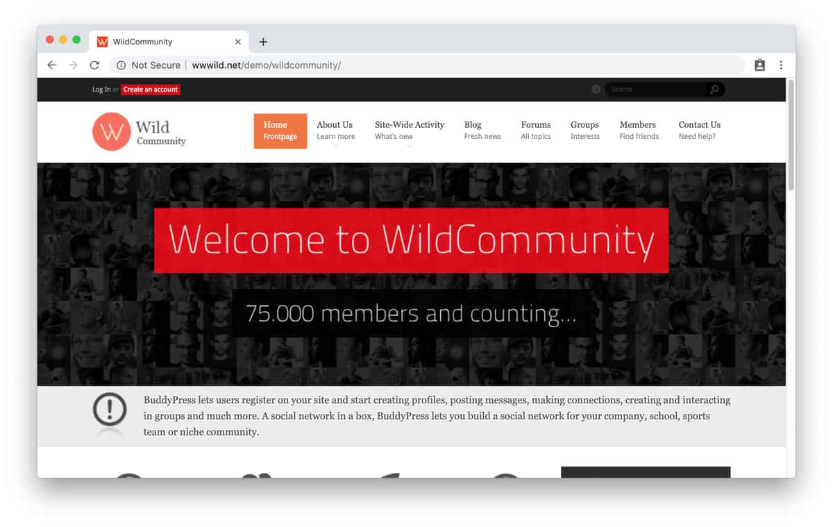 tema wordpress wild community