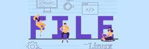 como usar comando file no linux